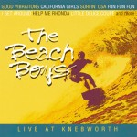 Beach Boys: Live at Knebworth 1980 (2003)