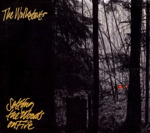 Walkabouts: Setting Woods On Fire (1994)