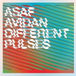 Avidan, Asaf: Different Pulses (2012)