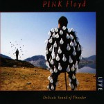 Pink Floyd: Delicate Sound Of Thunder (1988)