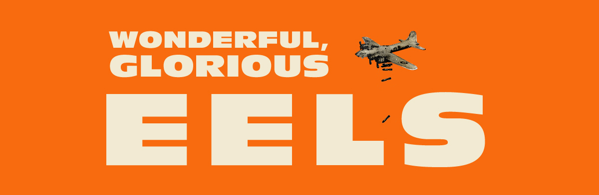 Eels: Wonderful, Glorious - Header