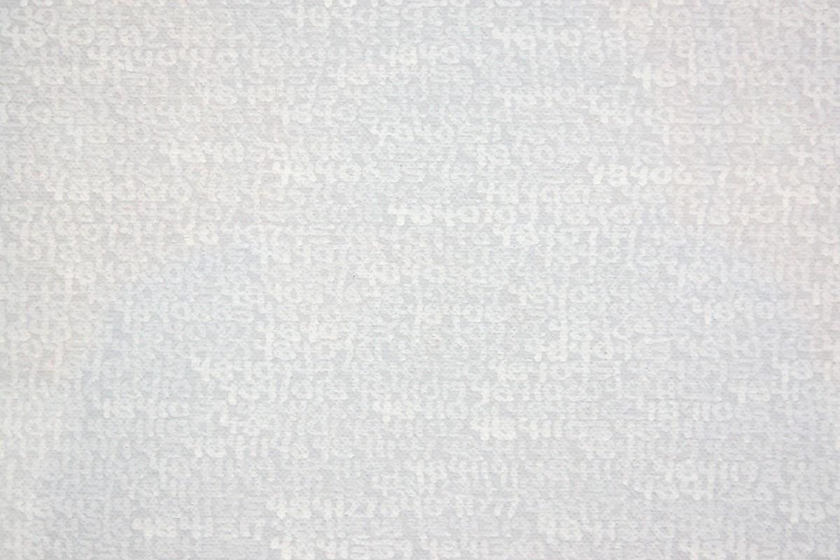 Roman Opalka: 1965/1–∞: Detail 4832244 - 4848049 (Ausschnitt)